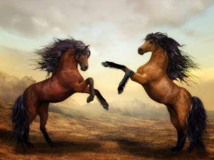 暴れ馬の調教は21日間でできる